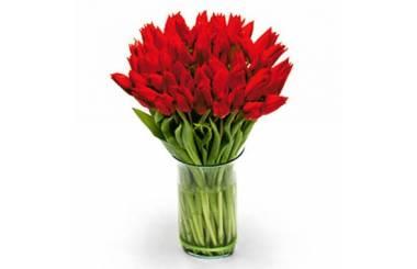 L'Agitateur Floral | image du Bouquet Rond de Tulipes Rouges