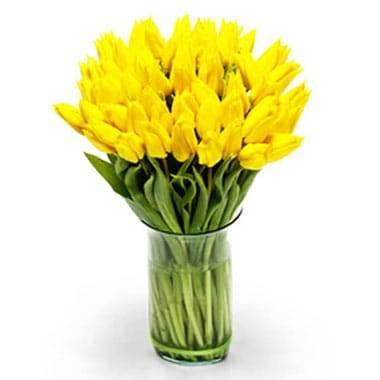 L'Agitateur Floral |Image du Bouquet de Tulipes Jaunes