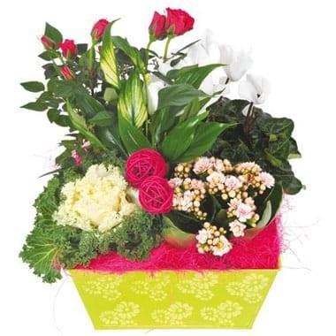 L'Agitateur Floral |image de la Composition de deuil blanche, rose, fuchsia Souvenir