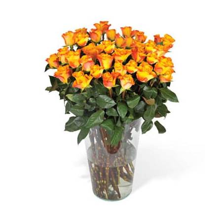 L'Agitateur Floral | image du Bouquet de Roses Oranges longues tiges