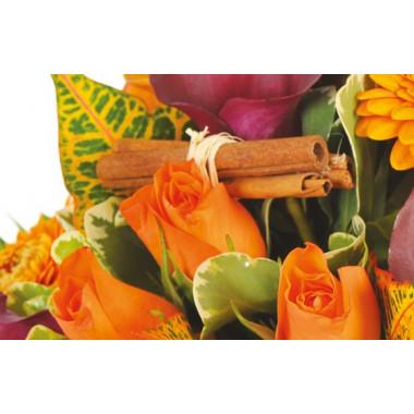 zoom sur une rosette orange et des branche de canelles