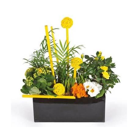 L'Agitateur Floral | image de la coupe de plantes dans les tons jaune le jardin d'Abel