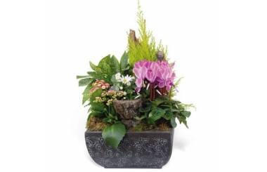 L'Agitateur Floral |image de la composition de plantes pour un deuil rose & blanche Infini