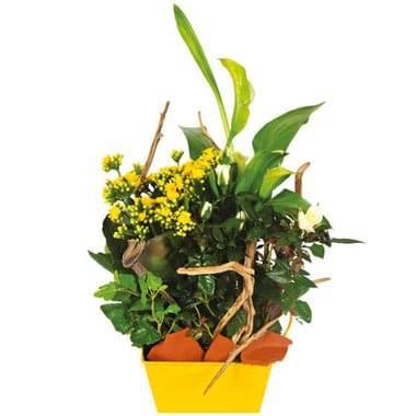 L'Agitateur Floral |image de la Composition de deuil jaune & blanche Intensité