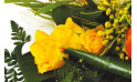 zoom sur des roses jaune-orangé