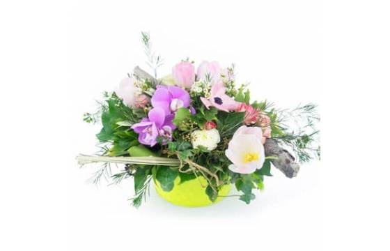 L'Agitateur Floral | Image de couverture composition Fleurs des Bois