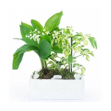 L'Agitateur Floral   image de la Composition de Muguet du nom de Brin de Détente