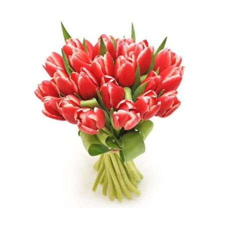 L'Agitateur Floral | image du Bouquet de tulipes rouges Perle Douce