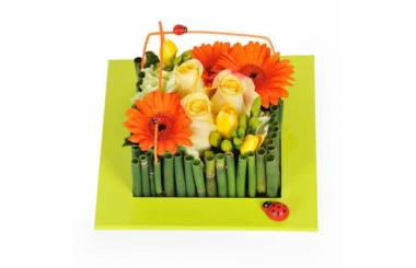 L'Agitateur Floral | Image de couverture composition carré Bilbao