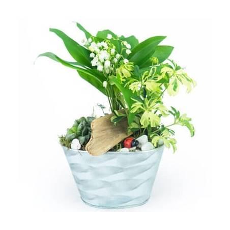 L'Agitateur Floral   image de la Composition de muguet Brin de Jardin
