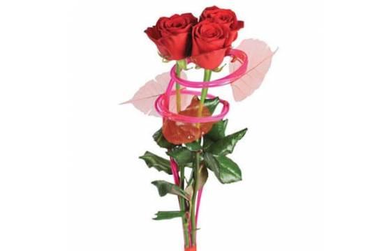 L'Agitateur Floral | Image du bouquet de trois roses rouges Ma Princesse