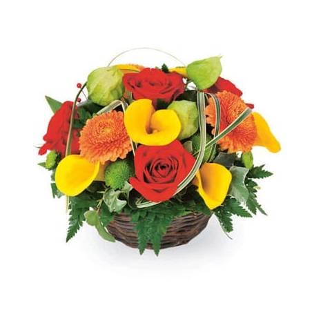 L'Agitateur Floral | Image de couverture composition colorée Maïa