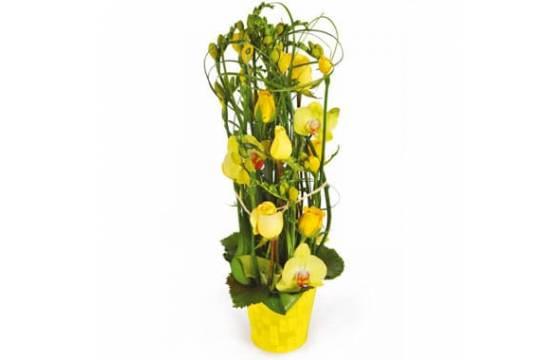 L'Agitateur Floral | image de la composition de fleurs dans les tons jaunes Bora-Bora