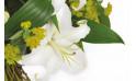 zoom sur un lys blanc de la création florale