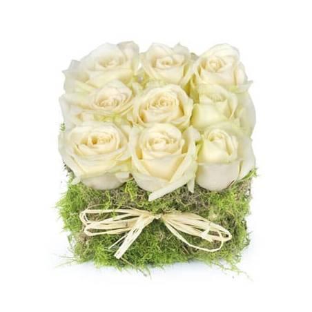 L'Agitateur Floral |image du carré de roses blanches déclaration