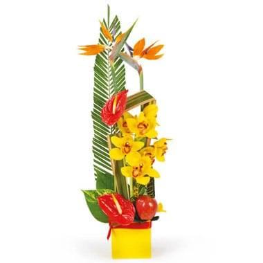 L'Agitateur Floral |image de la composition de fleurs en hauteur tons rouge, orange & jaune Tropique
