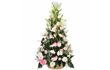 L'Agitateur Floral | Image de couverture composition Divinité