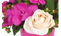 vue sur une orchidée et une rose blanche de la création florale
