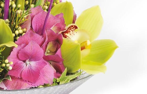 Composition florale : zoom sur une orchidée