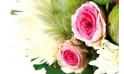 Composition florale Love : zoom sur deux roses roses