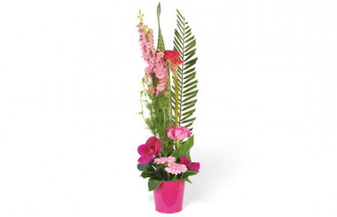 Image de la composition de fleurs Lady