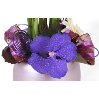 composition de fleurs Diva : zoom sur l'orchidée vanda mauve