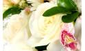 L'Agitateur Floral |zoom sur la rose de la Composition de fleurs blanche Charme
