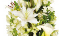 image d'un lys blanc de la composition de fleurs