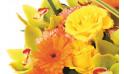 image des roses jaune et gerberas orange