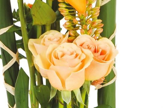 zoom sur une rose pale de la composition de fleurs