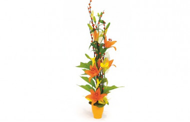 Image de la composition florale orange Abricot