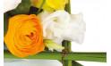 zoom sur un renoncule orange et lysianthus blanc