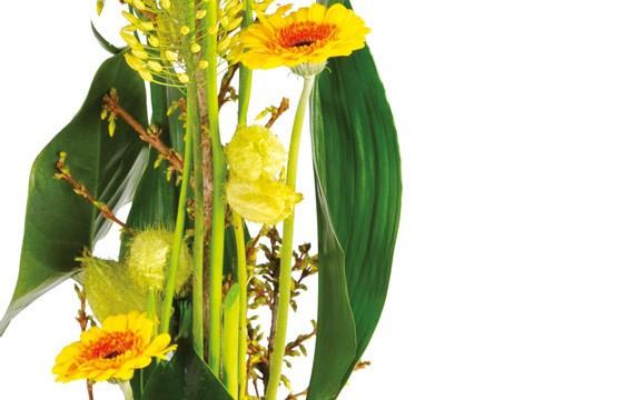 image du centre de la compositon florale Sunlight