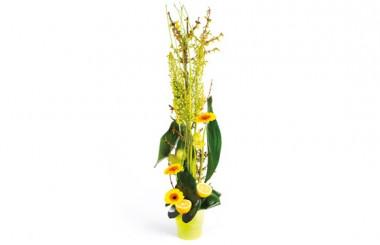 image de la composition de fleurs tons vert Sunlight