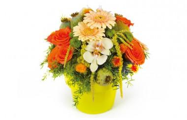 image de la composition de fleurs Mignon