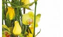 vue sur des roses jaunes et des fleurons d'orchidées