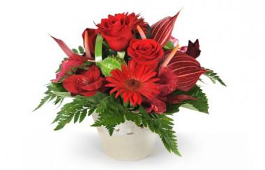 image de la composition de fleurs rouges flamboyant
