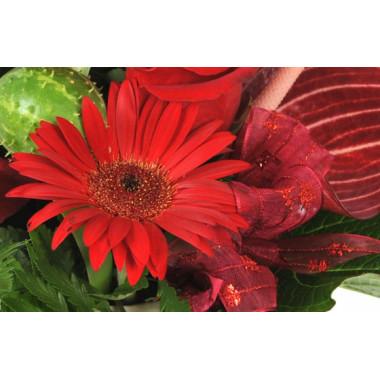 image d'un gerberas de couleur rouge de la composition