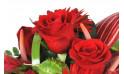 image de roses rouges de la composition florale Flamboyant