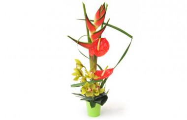 Image de la composition de fleurs exotiques Sauvage