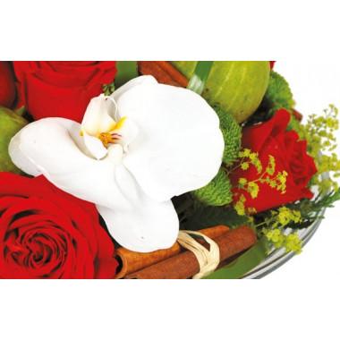 vue sur une orchidée blanche