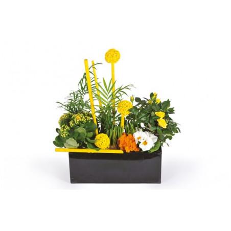 image de la coupe de plantes dans les tons jaune le jardin d'Abel