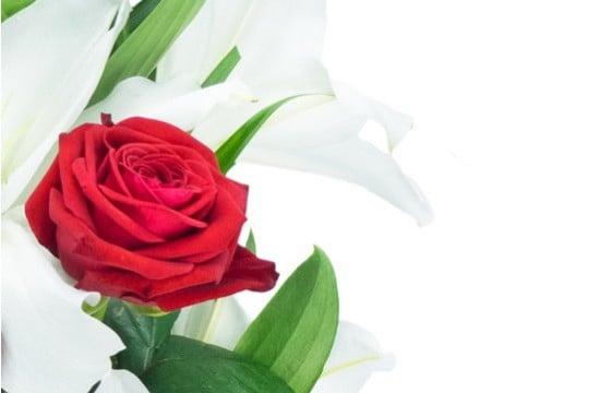 L'Agitateur Floral | zoom sur une rose du Bouquet de fleurs Mystère de Roses