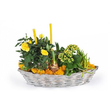 image de la composition de plante dans les tons jaunes Etamine la fleuriste