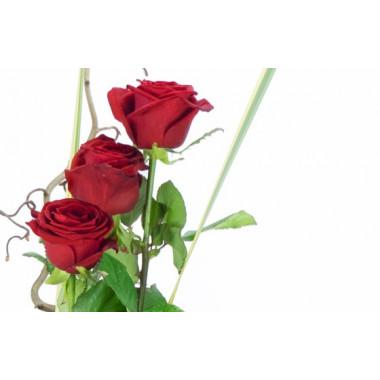 L'Agitateur Floral | zoom sur trois roses rouge du bouquet de roses