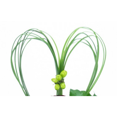L'Agitateur Floral | zoom sur le cerclage de feuillage en forme de coeur