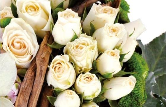 zoom sur des roses blanches du coeur en fleurs Douceur