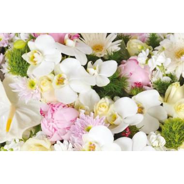 zoom sur les orchidées blanches et les pivoines roses