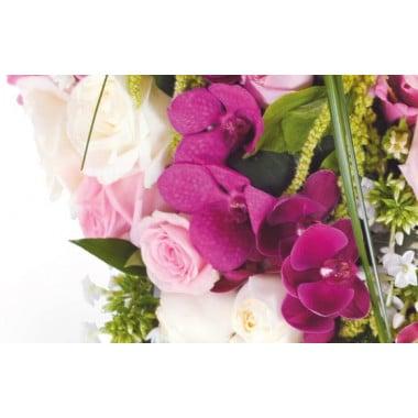 vue sur les orchidées du coeur de deuil Songe