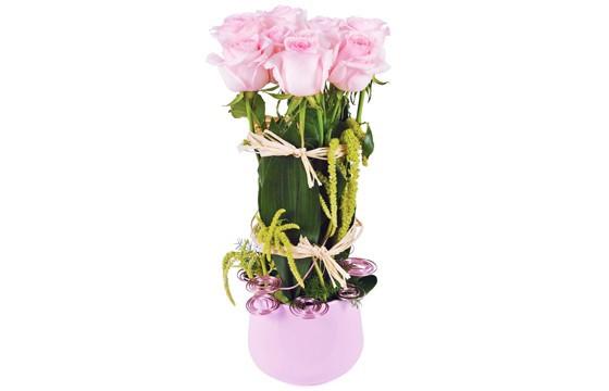 image de la composition de roses roses du nom allons voir si la rose...